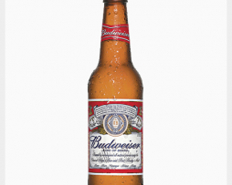 BUDWEISER-SINGLE-BOTTLE